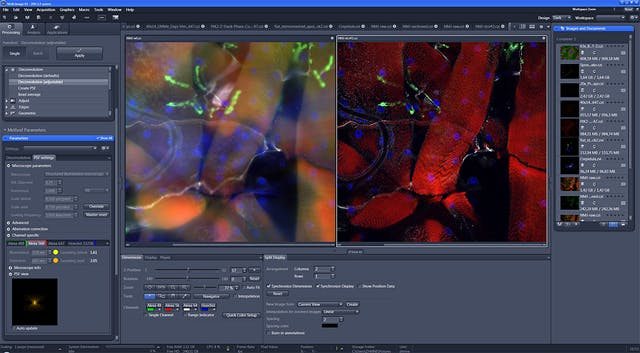 Zeiss Zen Microscope Software For Microscope Components