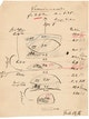 Berechnungen von Ernst Abbe zur Wasserimmersion von 1886.